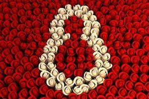 8-marzo-festa-della-donna.1020x680